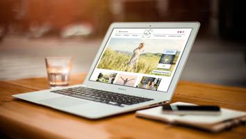 Werbeagentur M&W - Webdesign und Programmierung Website und Landingpages health plus corporation